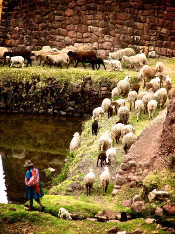 Huchuy Qosqo, Peru (2009)