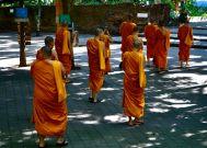 Chiang Mai, Thailand (2012)